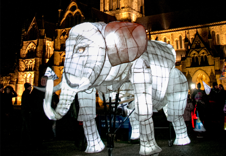 Image of an elephant lantern